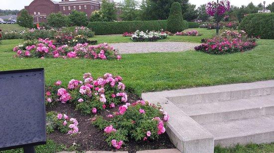 Leif Erickson Park & Rose Garden: Rose Garden