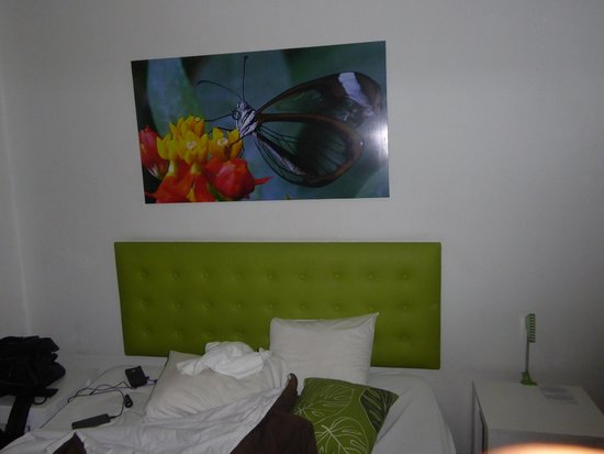 Hotel Cocoon: Picture