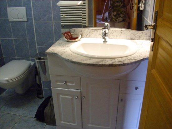 Hôtel les Catrems : salle de bains avec douche et toilettes