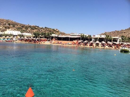 Pelican Bay Art Hotel: Mykonos - best beaches world wide !