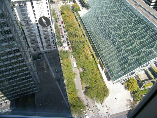Embarc Vancouver: Pretty high