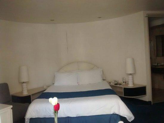 Hotel Century Zona Rosa México: Habitacion