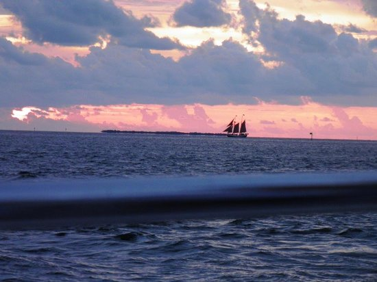 Hyatt Centric Key West Resort and Spa: Sunset cruise