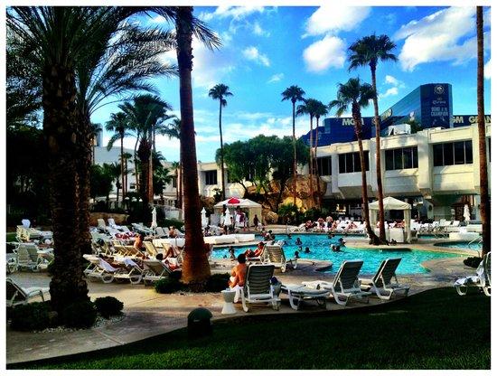 Tropicana Las Vegas - A DoubleTree by Hilton Hotel : Pool Time