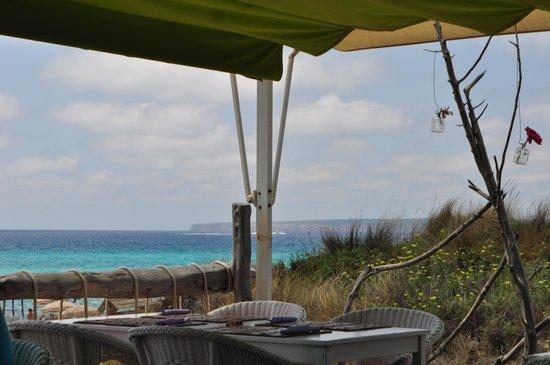 Flipper & Chiller : Beach front view from restaurant