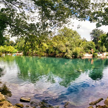 Barton Springs Pool: Barton Springs