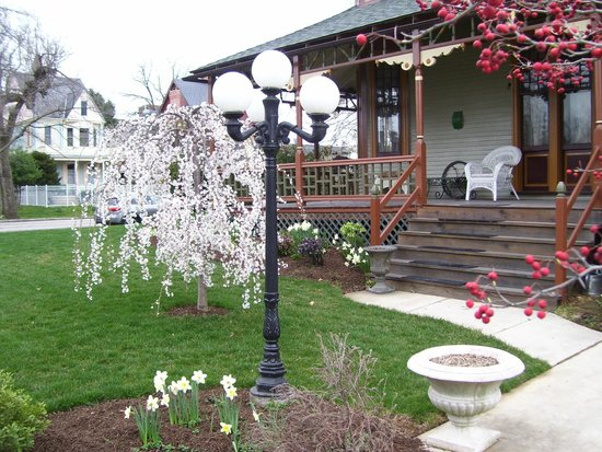 Lady Linden Bed and Breakfast: Visit in Spring