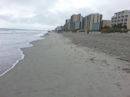 Hampton Inn & Suites Myrtle Beach/Oceanfront : The beach