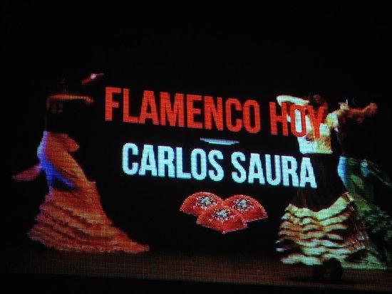 Auditorio del Sodre: Show de flamenco