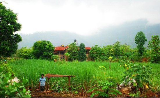 Govardhan Ecovillage