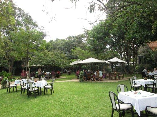 Tamambo Karen Blixen: garden