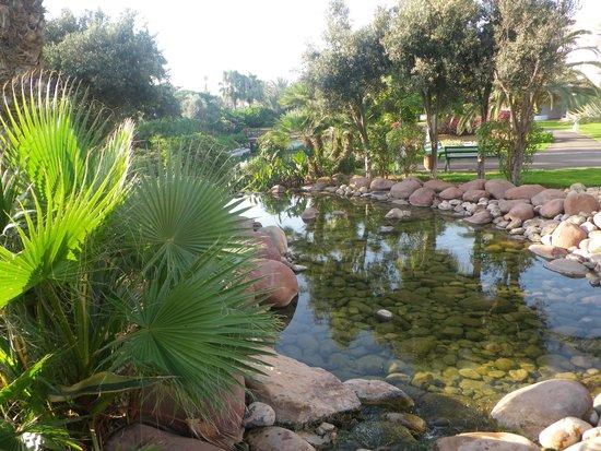 ClubHotel Riu Tikida Dunas : dans les jardins