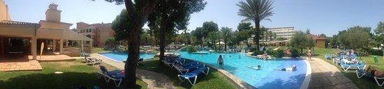 Grupotel Gran Vista & Spa: pool view