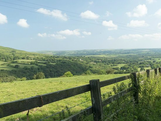 Gellifawr Country House and Cottages: views