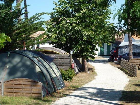 camping ile de ré le puma