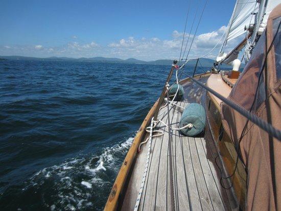 Schooner Olad Windjammer Cruise: Cruise aboard Sailing Vessel Owl