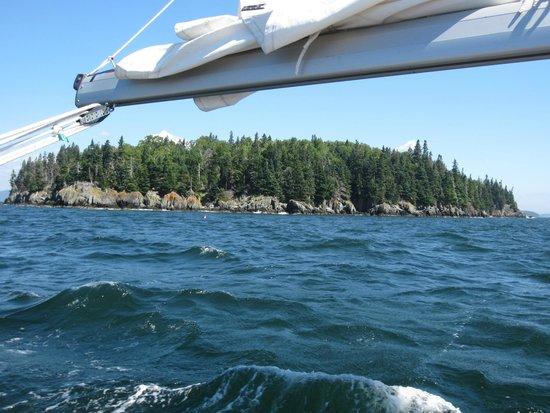 Schooner Olad Windjammer Cruise: Island in Penobscot Bay from aboard Sailing Vessel Owl