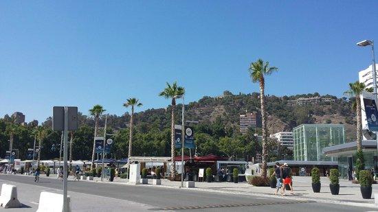 Puerto de Málaga : Paseo y distracción