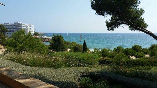Lumine Mediterránea Beach & Golf Community: View from restaurant