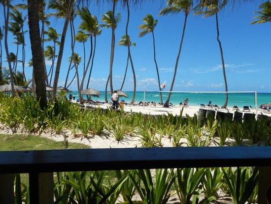 Grand Palladium Punta Cana Resort & Spa: vista del buffet ARRECIFE