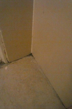 Ramada West Atlantic City: dirty  bathroom floor
