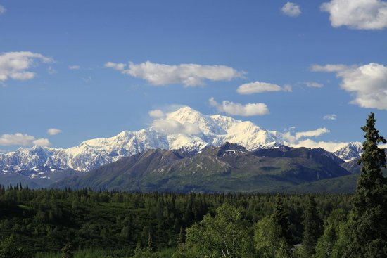 Adventure Alaska Tours: Denali on a clear day!