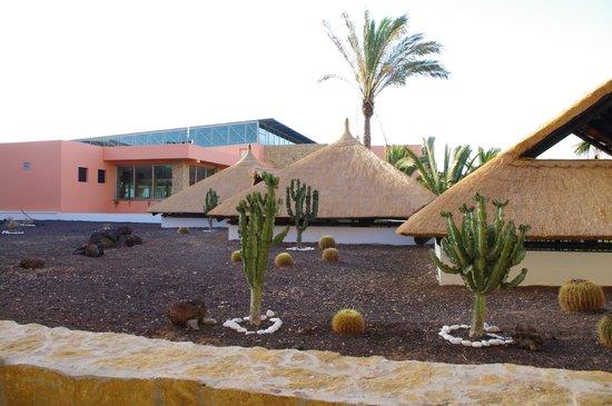 Barcelo Fuerteventura Thalasso Spa : Vue de notre Chambre