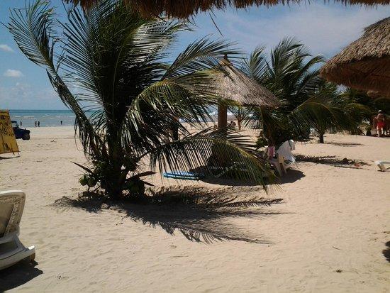 Salinas Maragogi All Inclusive Resort: Vista de um dos restaurante.