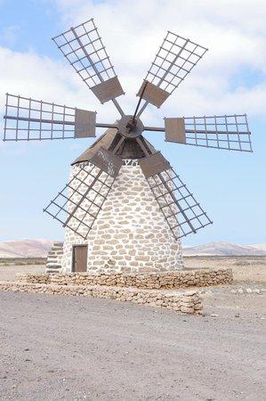 Barcelo Fuerteventura Thalasso Spa : Sortie vers le nord de l'île