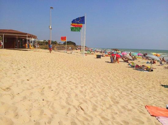 Playaballena Spa Hotel : une partie de la plage de Playa Ballena