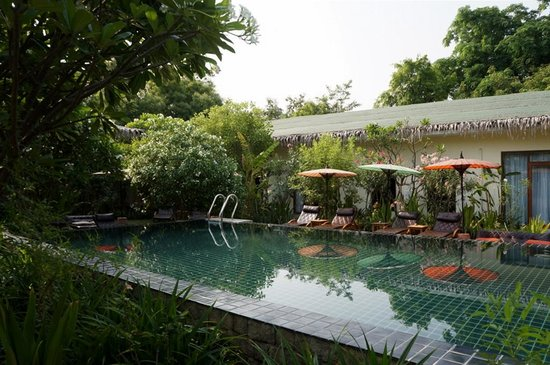 Blue Bird Hotel : Swimming pool