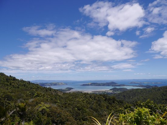 Pepper Tree Restaurant & Bar: Scenic lookout above Coromandel Town from SH25