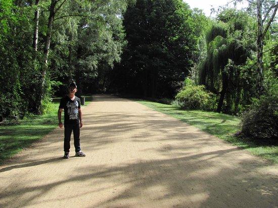 Caminhos do Tiergarten