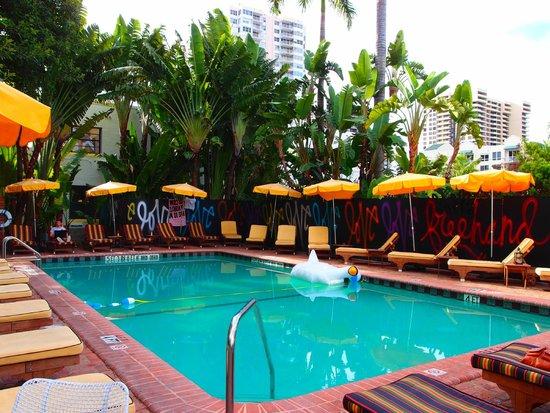 Freehand Miami: la pileta
