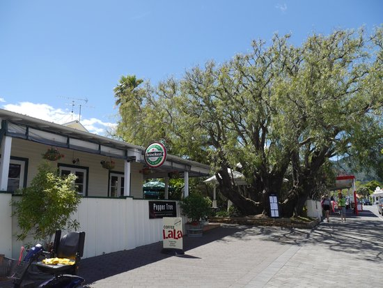 Pepper Tree Restaurant & Bar: The Pepper Tree at The Pepper Tree Restaurant