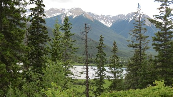 The Juniper Bistro: Mountains and lake, view from the patio