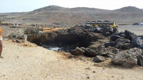 De Palm Tours: Nature! Our jeeps too!