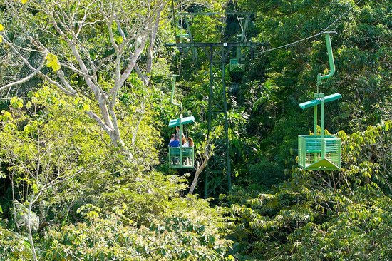 Gamboa Rainforest Resort : Aerial Tram