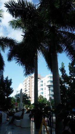 Pestana South Beach Art Deco Hotel : Entrada do hotel