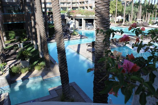 Hyatt Regency Scottsdale Resort and Spa at Gainey Ranch: Arial of the pool