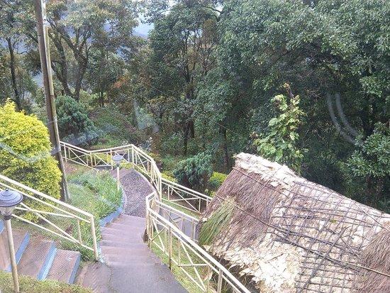 Deshadan Mountain Resorts : View fro Restaurant
