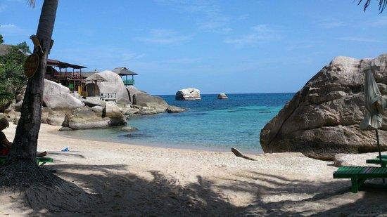 旦岛海滩 - Picture of Koh Tan, Ko Samui - TripAdvisor