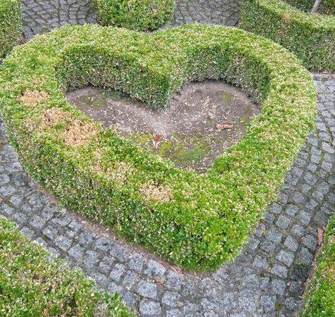 Musée David et Alice van Buuren : Coeur végétal