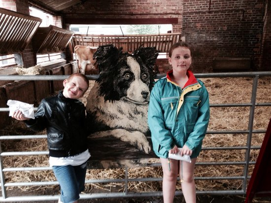 Tatton Park: Just arrived at the farm and looking to feed the goats.