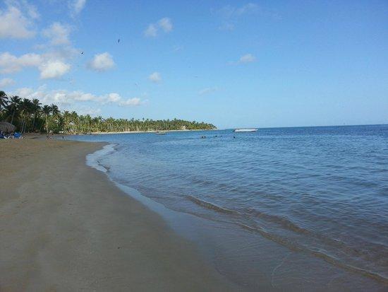 Grand Bahia Principe El Portillo : Praia do Hotel