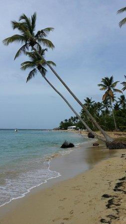 Grand Bahia Principe El Portillo : Passeio pela praia