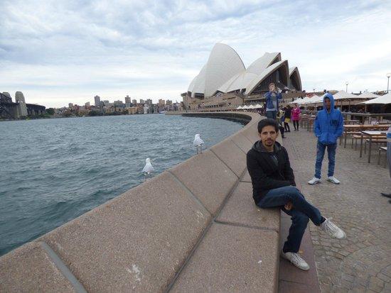 Sydney Opera House: Harbor side