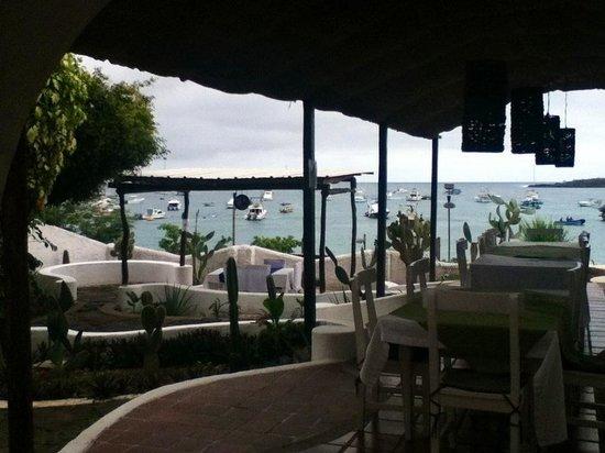 Casa Opuntia Galapagos: El área del restaurante...