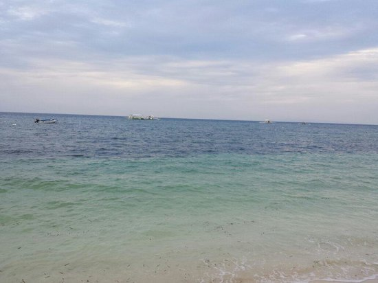 Alona Vida Beach Resort: Beach front