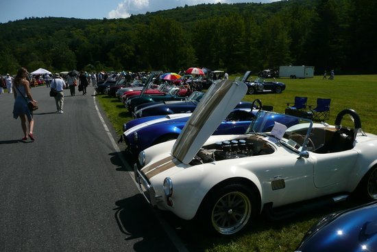Lime Rock Park: the Sunday car show - Cobra section